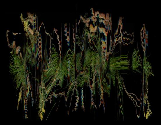 KMelancon_SevenSistersSeriesStillLife2 - Grass, Scrub, Woodland